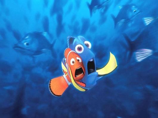 Qui est dory le poisson chirurgien - Nemo et doris ...
