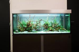 photographie - Aquadesigner