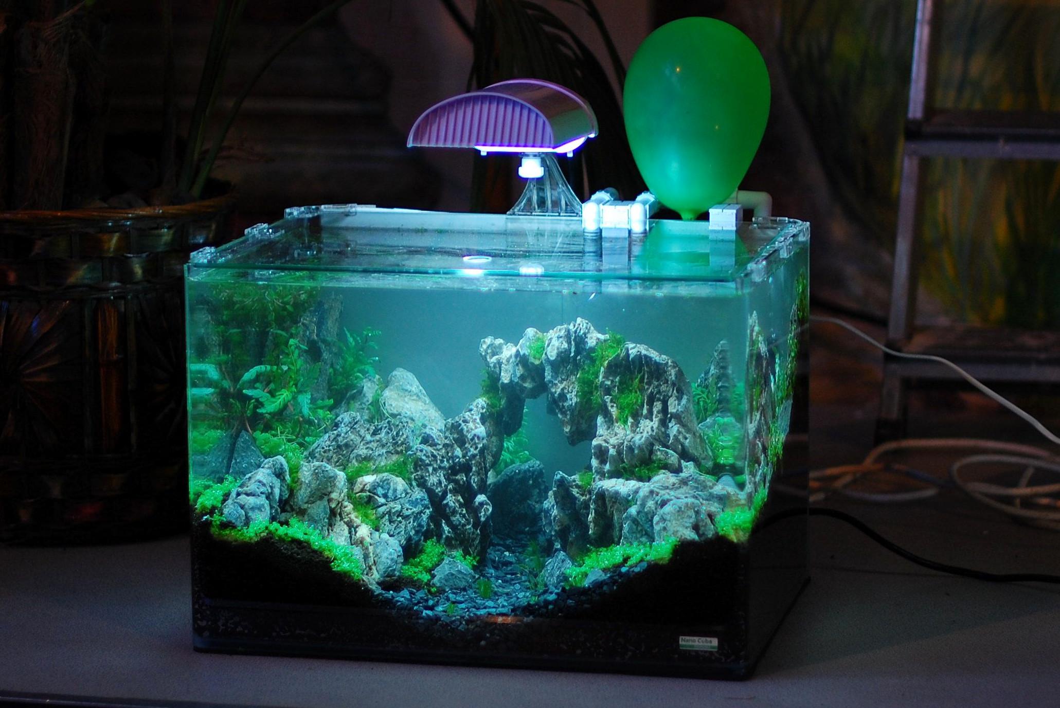 Eclairage Contre Marche Led quel éclairage choisir pour son aquarium ? - fishipedia
