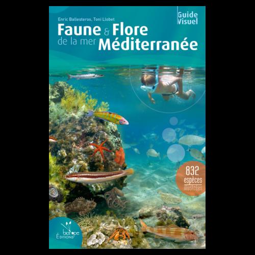 Guide de poissons de Méditerranée